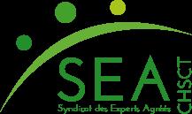 """Logo du syndicat des experts agréés CHSCT, désormais expert habilité CSE pour réaliser des expertises au titre de l'article L. 2315-94 du code du travail en cas de """"risque grave"""", de """"projet important"""", de """"négociation de l'égalité professionnelle"""""""